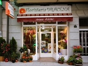 Floristería Drácena