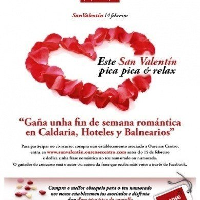 Campana San Valentin 2013